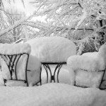 Aș sta și eu de vorbă cu iarna, dar nu la -22 de grade